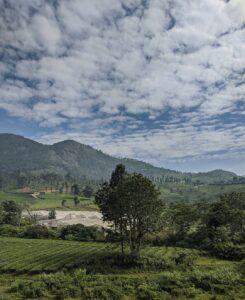 5 hill stations in tamil nadu